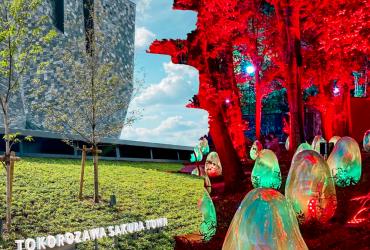隈研吾新作「角川武藏野博物館」& teamLab 常設展|所澤櫻花城看點統整|東京近郊景點