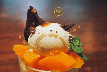 京都推薦餐廳 隱藏在住宅區的古書茶坊 療癒系貓咪造型聖代