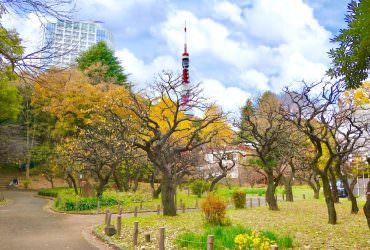短文日記|一股無形的力量將我推向日本