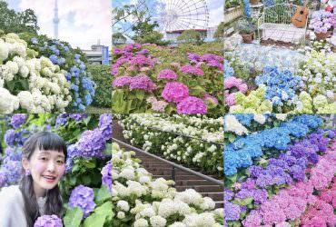 6月的東京繡球花夢幻景點6選 打卡美照唾手可得|東京自由行